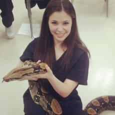 Registered vet technician holding a snake